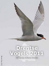 Drentse Vogels nr 25