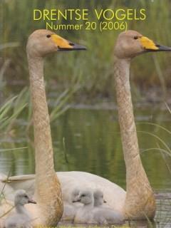 Drentse Vogels 20