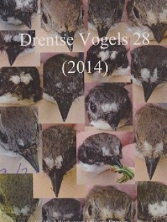 Drentse Vogels 28