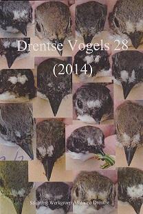 Drentse Vogels nr 28